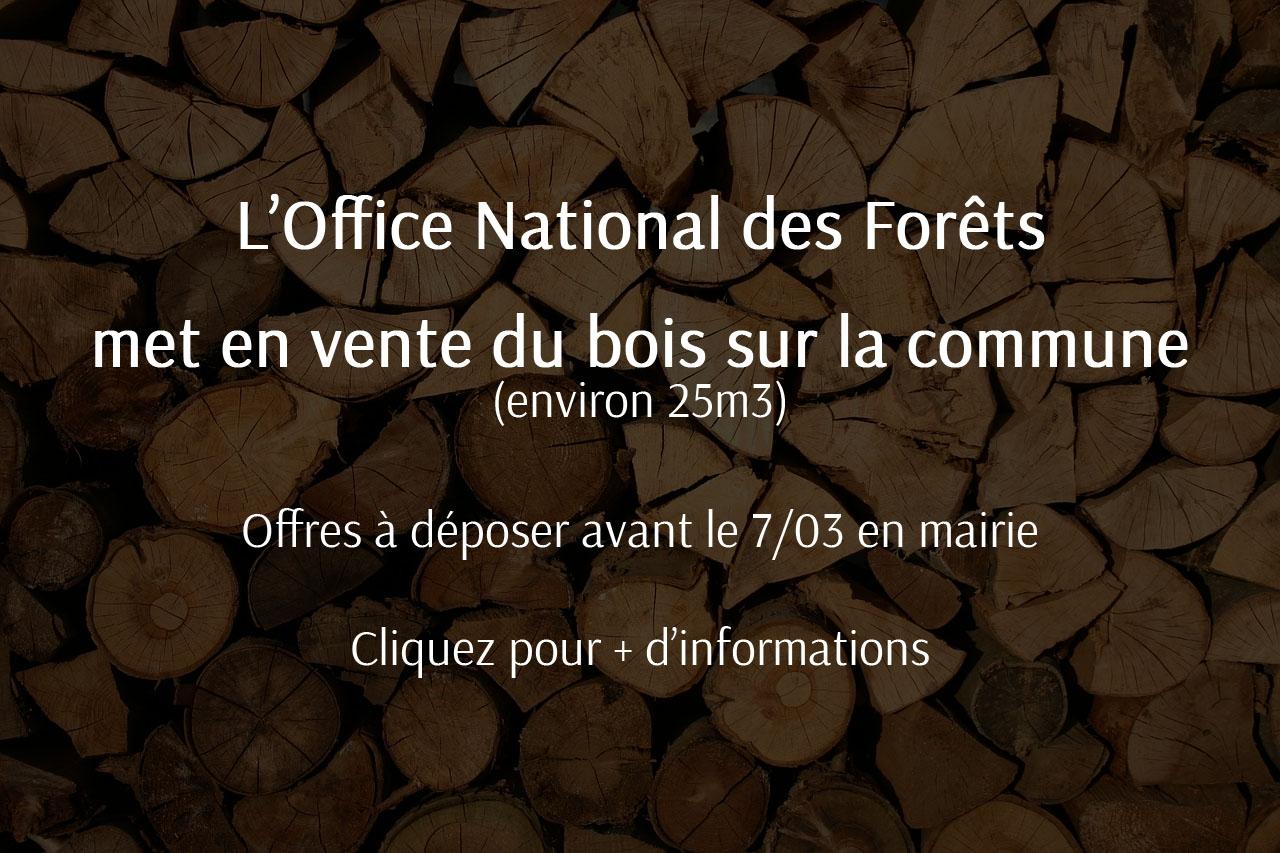 Mise en vente de bois par l'Office National des Forêts
